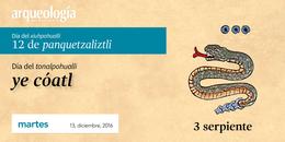 13 diciembre, 2016 /3 serpiente
