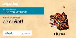 25, junio, 2016 / 1 jaguar