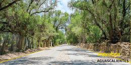 El Camino Real de Tierra Adentro y Aguascalientes