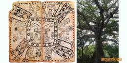 La concepción maya del cosmos