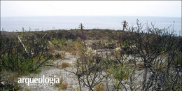 Arqueología de la Costa del Pacífico Norte de Baja California
