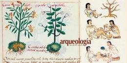 Aportaciones de la medicina náhuatl prehispánica