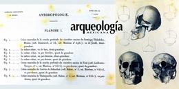 Más allá de los archivos de la Comisión Científica en México. Las aportaciones de las bibliotecas y de los museos