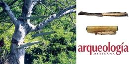 Copal, humo aromático de tradición ritual mesoamericana