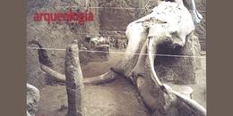 El sitio paleontológico de Tocuila
