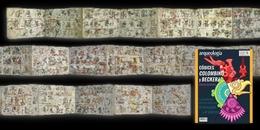 Códices Colombino y Becker I. La historia de los señores 8 venado y 4 viento