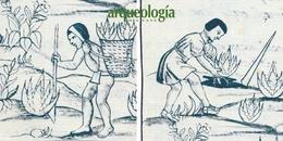 Los instrumentos agrícolas