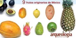 9 frutos originarios de México