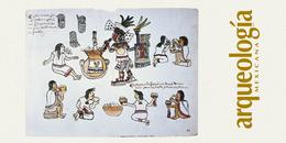 Las bebidas alcohólicas indígenas no destiladas de México