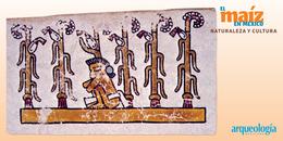 El maíz y las primeras sociedades