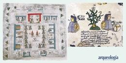 Códices de la región texcocana