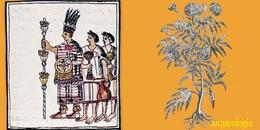 Las fiestas prehispánicas y el cempoalxóchitl