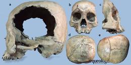 Un cráneo para las deidades