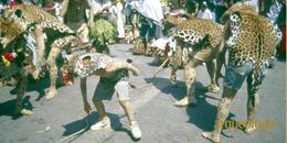 El pochó: una danza de carnaval en Tenosique, Tabasco